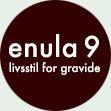 enula 9 logo