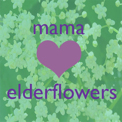 mama tea elderflower tea for pregnancy
