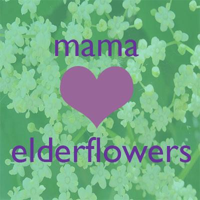 mama tea elderflower tea for pregnancy