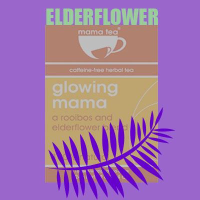 elderflower for pregnancy mama tea